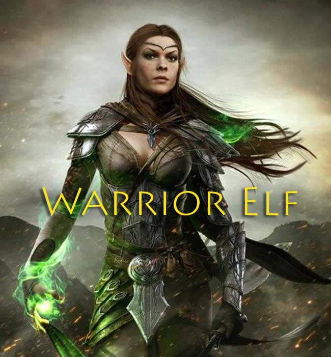 warrior-elf-650-16-2